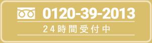 0120-39-2013